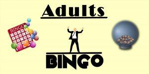 Adults' Bingo Club @ Priory View   Windmill Hill   England   United Kingdom
