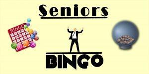 Seniors' Evening Bingo Club @ Priory View | Windmill Hill | England | United Kingdom